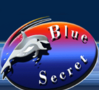Blue Secret Böheimkirchen logo