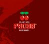 Madlein Vip Club Ischgl logo